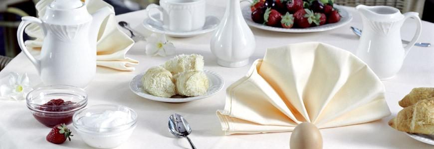 Lunch Dinner Snack Bar Offers Best Western Plaza Hotel